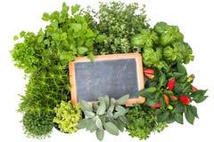 Ervas frescas da cozinha Fotografia de Stock