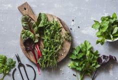 Ervas frescas do jardim - o estragão, a acelga, a hortelã, o aipo, o espinafre, o tomilho na placa de corte e o vintage scissors  Foto de Stock