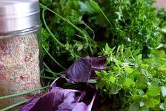 Ervas frescas e ervas tingidas no abanador Imagem de Stock