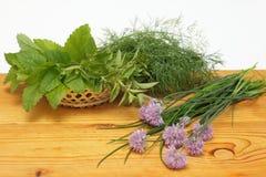 Ervas frescas em uma cesta Fotos de Stock
