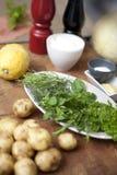 Ervas frescas na cozinha fotografia de stock