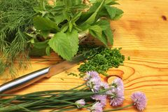 Ervas frescas na cozinha Foto de Stock Royalty Free