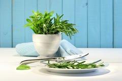 Ervas frescas na tabela Foto de Stock