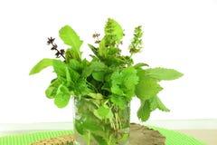 Ervas frescas para cozinhar Fotografia de Stock Royalty Free