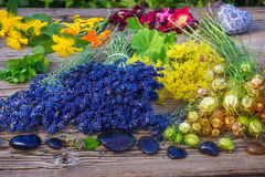 Ervas medicinais e pedras curas Imagem de Stock Royalty Free
