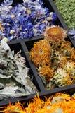 Ervas secadas. Foto de Stock