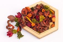 Ervas secadas em um baixo vaso de madeira Fotografia de Stock Royalty Free