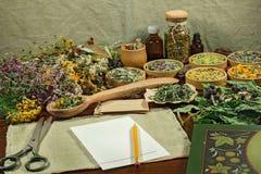 Ervas secadas para o uso na medicina alternativa Fotografia de Stock Royalty Free