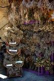 Ervas secas Foto de Stock Royalty Free