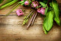Ervas sobre a madeira Fotos de Stock Royalty Free