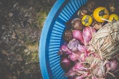 Ervas tailandesas na cesta azul Fotos de Stock