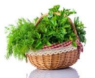 Ervas verdes aneto e salsa da cesta no fundo branco Fotografia de Stock