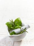 Ervas verdes em um almofariz e em um pilão fotografia de stock
