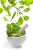 Ervas verdes que caem no almofariz e no pilão fotos de stock