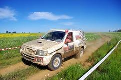 Ervideira Rali TT 2013 Lizenzfreie Stockfotografie