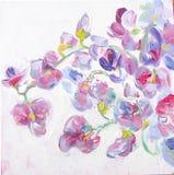 A ervilha doce floresce refeições matinais pintura da Ainda-vida Fotografia de Stock Royalty Free
