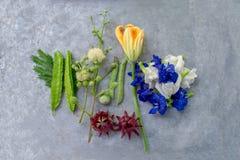 A ervilha floresce, Roselle, baga de Turquia, feijão voado, abóbora, oleracea Lour de Neptunia em uma bandeja do metal fotografia de stock royalty free