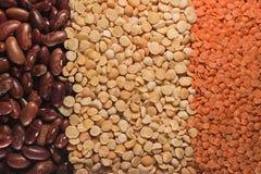 Ervilhas e lentilhas dos feijões Imagens de Stock Royalty Free