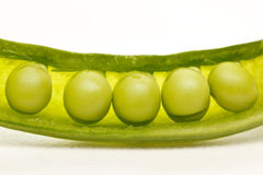 Ervilhas em um vagem Imagens de Stock