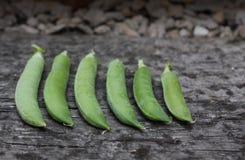 Ervilhas em uma vagem Fotografia de Stock