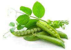 Ervilhas frescas, verdes, doces Imagens de Stock Royalty Free