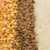 Ervilhas, lentilha, arroz Imagens de Stock