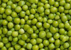 Ervilhas verdes Imagens de Stock Royalty Free