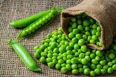 Ervilhas verdes e vagens frescas de Hearthy na tela rústica Fotos de Stock