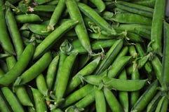 Ervilhas verdes em um vagem Fotos de Stock Royalty Free