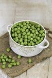 Ervilhas verdes frescas em uma bacia Fotos de Stock Royalty Free
