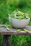 Ervilhas verdes frescas em uma bacia branca sobre fotografia de stock royalty free