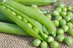 Ervilhas verdes frescas vegetais imagem de stock royalty free