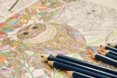 Erwachsene Farbtonbücher mit Bleistiften, neue Druckentlastungstendenz, Mindfulnesskonzeptperson färbend illustrativ lizenzfreies stockfoto
