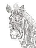 Erwachsene Farbtonseite des Zebras Stockfoto