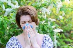 Erwachsene Frau mit allergischer Rhinitis über Vogelkirschblüten Stockbild