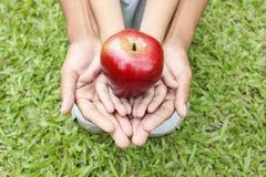 Erwachsene Hände, die Kinderhände mit rotem Apfel halten Lizenzfreie Stockbilder