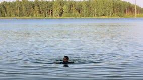 Erwachsene Mannschwimmen im See am grünen Wald am sonnigen Tag des Sommers wochenende nave erholung stock video footage