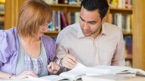 Erwachsene Studenten, die zusammen in der Bibliothek studieren Lizenzfreies Stockbild