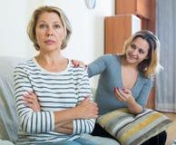 Erwachsene Tochter möchte mit beleidigter reifer Mutter versöhnen Stockbild