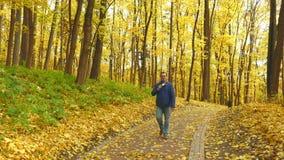 Erwachsener Journalist mit dem Mikrofon, das im Park arbeitet stock video footage