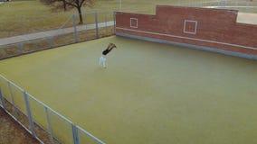 Erwachsener, junger Mann in der weißen Jacke zeigt akrobatischen leichten Schlag stock video