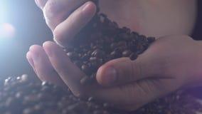 Erwachsener Mann übergibt strömende Kaffeebohnen in der Zeitlupenahaufnahme stock video footage