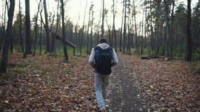 Erwachsener Mann geht entlang den herbstlichen Wald neue Eindrücke der Natur erhalten stock video footage