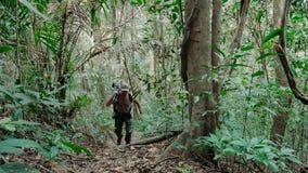 Erwachsener Mannphotograph, der durch schönen Dschungel geht stock video