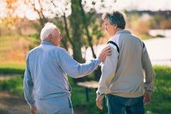 Erwachsener Sohn, der mit seinem älteren Vater im Park geht stockfoto