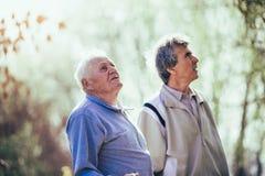Erwachsener Sohn, der mit seinem älteren Vater im Park geht stockbilder