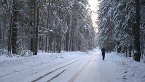 Erwachsener Sportler, der auf der Straße im Winterwald läuft stock video footage
