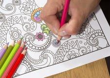 Erwachsenes Malbuch und bunte Bleistifte Lizenzfreie Stockfotos