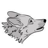 Erwachsenes Wolfkopfgesicht Stockbilder