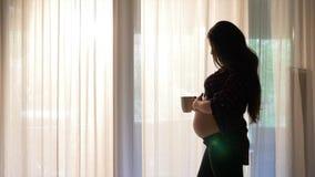 Erwartungsvolle junge Mutter, die durch den trinkenden Tee des sonnigen Fensters sitzt und ihren Bauch bei Sonnenaufgang streiche stock video